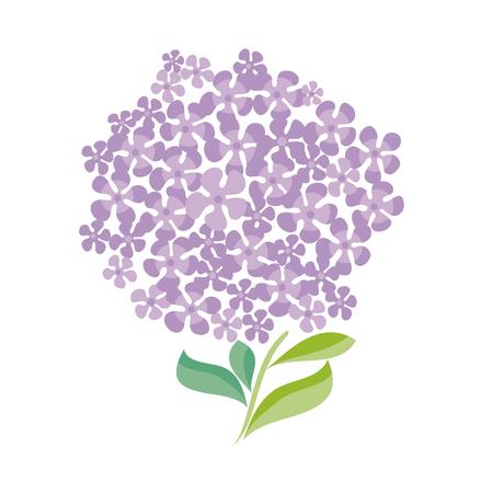 chick: simple shape decorative hydrangea bunch. vector illustration