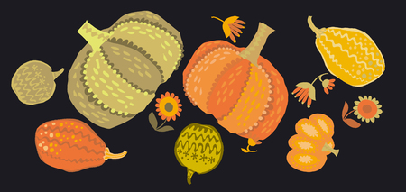 cute simple naive pumpkin set. vector illustration for fall thanksgiving celebration Illustration