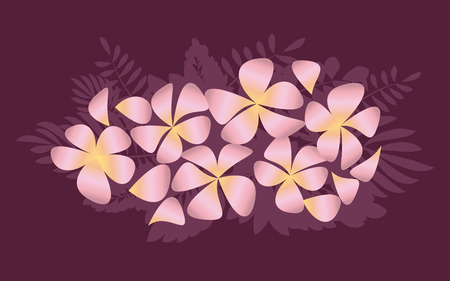 Abstract decorative frangipani floral vector illustration. Plumeria flowers in simple elegant style.