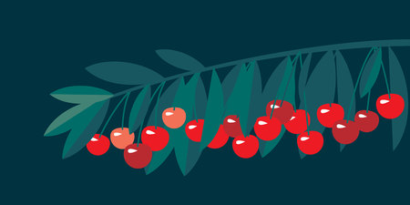 Rape cherry fruit simple flat design element. Natural cherries fruit tree branch for header, card, invitation, poster, cover and other web and print design projects