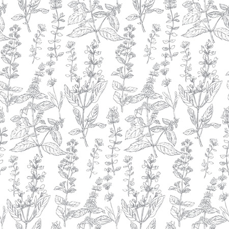 Hand drawn herbal sketch seamless pattern for background, wrapping paper, fabric, surface design. French grass for cooking in light repeatable motif. Floral stock illustration