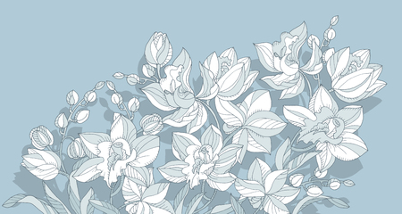 Line art orchid flower design element in  dust pale blue color. Vector illustration for invitation, header, card.