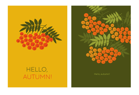 Hello autumn typography color illustrations with rowanberry. Rowan branches, twigs with red berries isolated vintage cliparts. Brochure, catalog cover page, banner, poster vector design templates Ilustrace