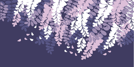Frühling Akazienblüte Farbe Vector Illustration. Wisteria blüht Vintage-Textur mit Textraum. Violetter, weißer lila blühender weicher Hintergrund. Dekoratives Blumenplakat, Grußkarte, Bannerdesign