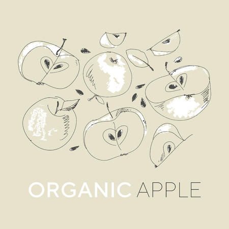Fresh apples hand drawn vector illustrations set. Organic food cliparts collection. Ripe fruits isolated ink pen sketch drawing. Monochrome leaves, slices. Line art style botanical design elements Banque d'images - 124617392