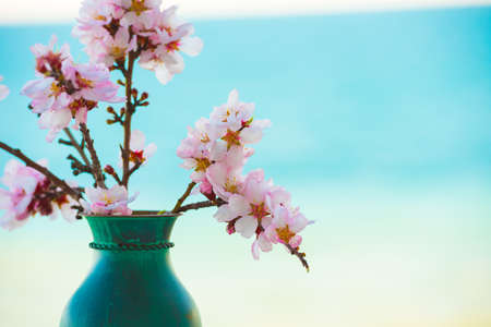 Flowering almond branches in a vase. Copy space