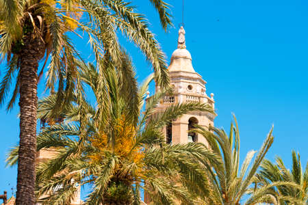 Palm trees close-up, in the background a tower of the church of Sant Bartomeu and Santa Tecla in Sitges, Barcelona, Catalunya, Spain. Isolated on blue background Stock Photo