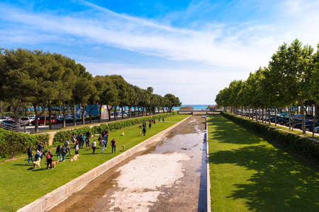 the dorada: CAMBRILS, SPAIN - APRIL 30, 2017: A group of people walking in a park with dogs. Top view Editorial