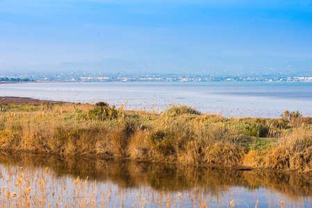 ebro: landscape river Ebro Delta in Spain, Tarragona, Catalunya. Copy space for text