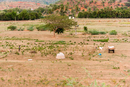 PUTTAPARTHI, ANDHRA PRADESH, INDIA - JULY 9, 2017: A view of the Indian rural landscape. Copy space for text