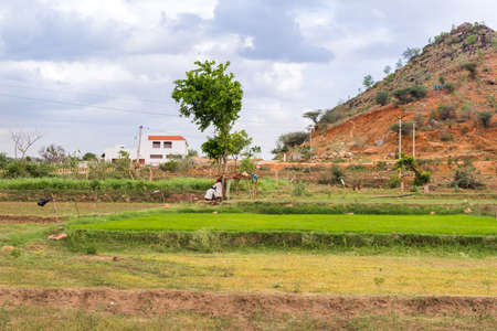 View of the indian rural landscape, Puttaparthi, Andhra Pradesh, India. Stock Photo