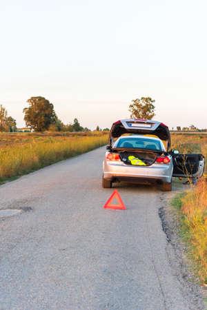 ebro: Landscape of the Ebro Delta, the car on the road.