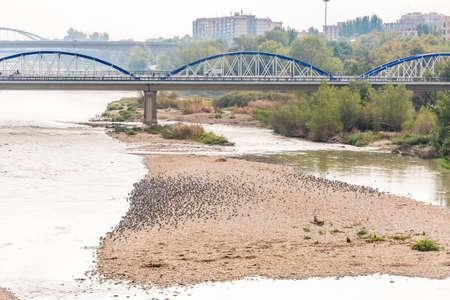 ebro: Bridge over the Ebro River, Zaragoza, Spain. Copy space for text Stock Photo