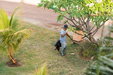 De tuinman werkt in de tuin, Varadero, Matanzas, Cuba. Ruimte voor tekst kopiëren