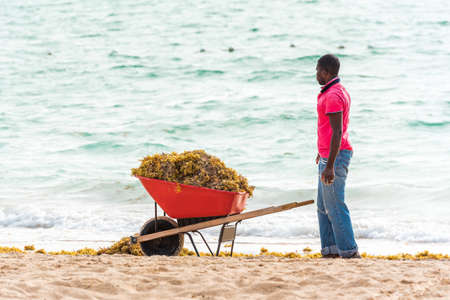 PUNTA CANA, DOMINICAN REPUBLIC - MAY 22, 2017: A man with a cart tidies up on the beach. Copy space for text