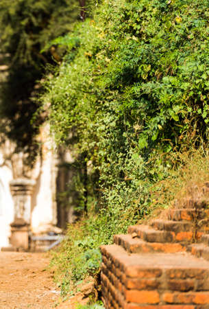 View of the ruins of the temple in Bagan, Myanmar. Close-up. Vertical Stock Photo