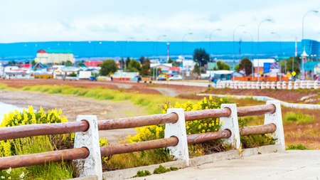View of a wooden fence and yellow flowers, Punta Arena, Chile. Copy space for text