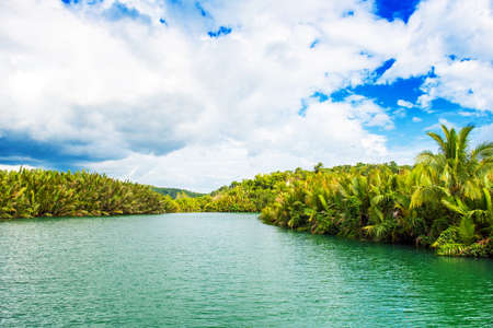 View of jungle green river Loboc at Bohol island of Philippines. Copy space for text