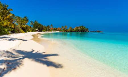 Blick auf den paradiesischen Sandstrand, Malediven. Kopieren Sie Platz für Text