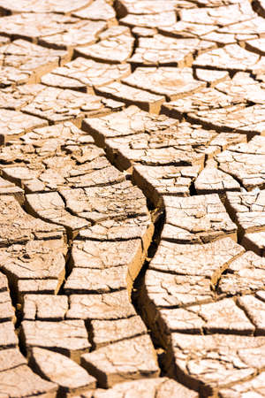 Desert texture, Atacama, Chile. Close-up. Vertical