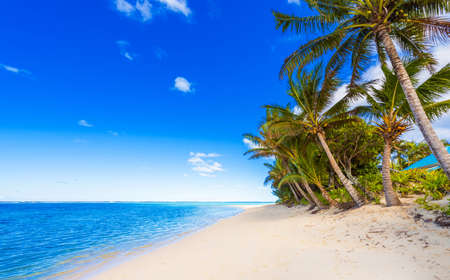View of the sandy beach, Cook Islands, South Pacific. Copy space for text
