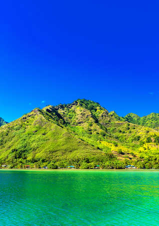 View of the mountain landscape, Moorea island, French Polynesia. Vertical. Copy space for text