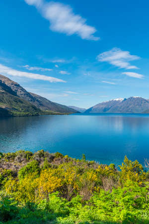Wakatipu, Queenstown, New Zealand. Copy space for text. Vertical