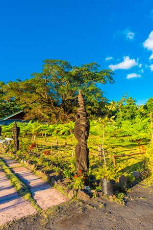 Wooden sculptures at the foot of the volcano Yasur, Tanna Island, Vanuatu. Vertical Stock Photo