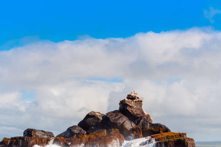 Rock in the ocean on a background of the cloudy sky, Galapagos Island, Isla Isabela