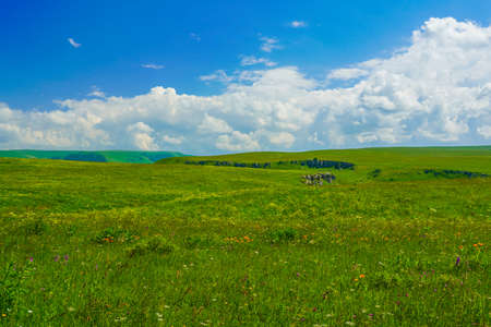 Aerial view of a Beautiful Meadow Mountain Summer Landscape at Elbrus Green Slopes of the Northern Elbrus Caucasus Region. Blue sky with white clouds.