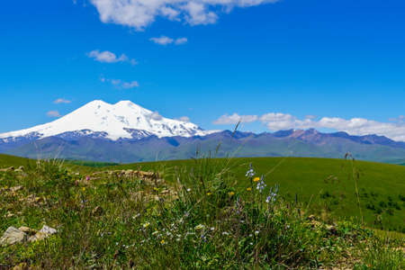 Meadow with Background Mount Elbrus In Summer. Stock Photo