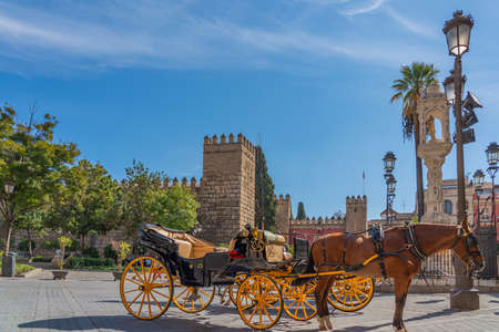 SEVILLE, SPAIN - OCTOBER 17, 2020: Horse-drawn carriages for hire on Plaza del Triunfo, Seville, Andalusia, Spain