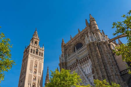 Detail of the Cathedral of Saint Mary of the See in Seville, largest Gothic cathedral. Word Site.