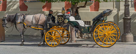 Horse-drawn carriages for hire at the cathedral of Seville, Andalusia, Spain Editorial