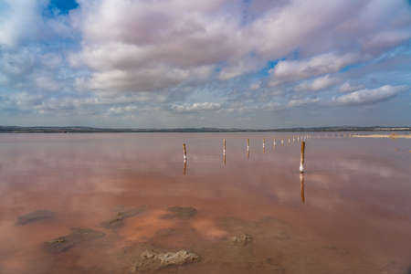 Wooden posts in the pink salt lake with reflection on water from clouds, Laguna Rosa, Torrevieja
