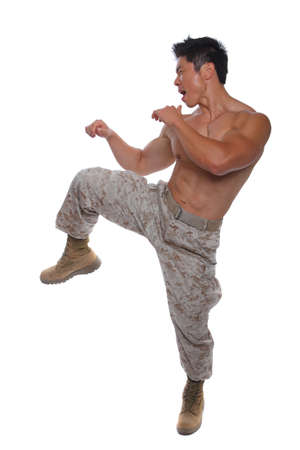 Muscular Marine in Karate Stance in Uniform isolated on white photo