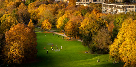 Autumn scenery in park 免版税图像