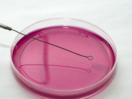 petri: Microbiology Tools