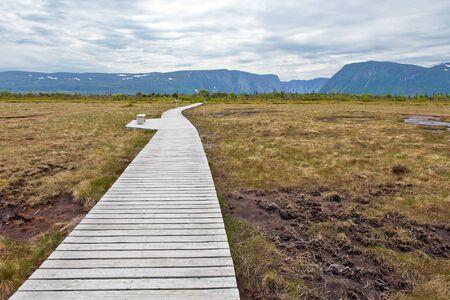 extending: Long wooden boardwalk extending over the marsh.