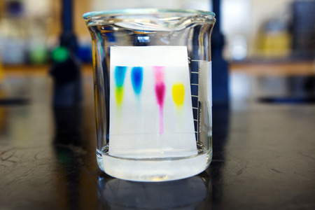 Separation of food coloring compounds by thin layer chromatography.