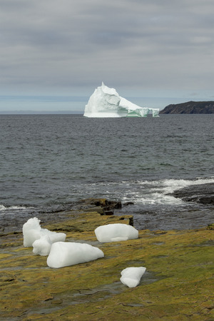 Large 10,000 year old iceberg drifting along the Newfoundland coastline in summer.