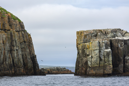 The iconic spout on the east coast walking trail viewed form Shoal Bay. Popular with adventure tourist and hikers, Newfoundland and Labrador.