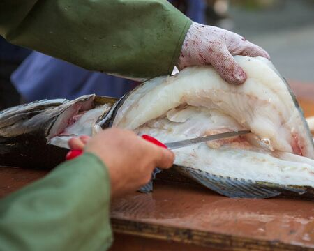 Filleting of cod fish in the market for local consumption.