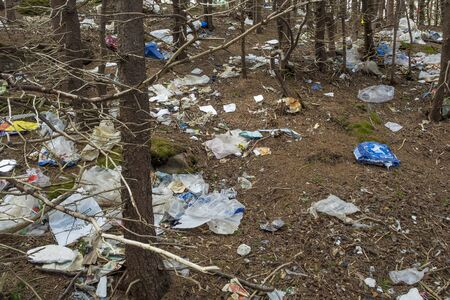 Waste abandoned in the woods, along a popular walking trail, showing the carbon footprint of humans.