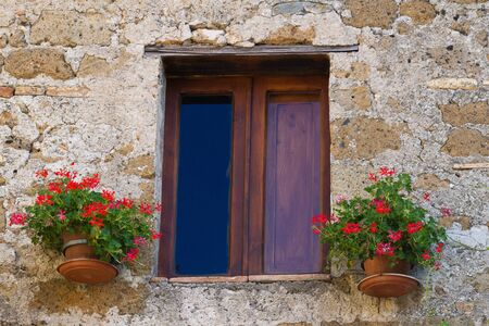 Front window with flowers growing in planters.