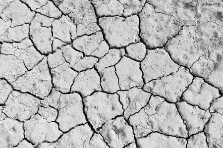 A color portrait of dried cracked mud of a riverbed caused by global warming.