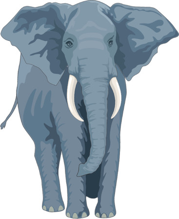elephant trunk: vector elephant
