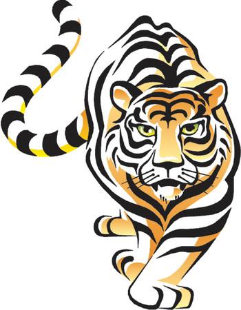 tigres: Vector Tiger  Vectores