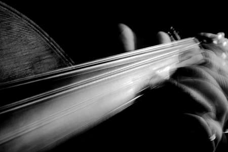 fingerboard: Blurry fingers moving on a violin fingerboard