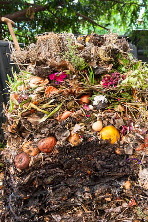 Compost pile opened up